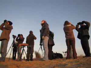Bénévoles du camp de migration © Mat Sannier