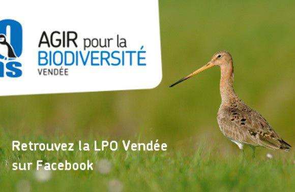 La LPO Vendée sur facebook