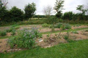 Jardin Refuge LPO © Amandine Brugneaux - LPO Vendée