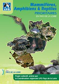 mammiferes_reptiles_amphibiens_PDL