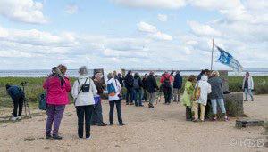 Sortie de découverte de la migration à la Pointe de' l'Aiguillon © Katia Dutour