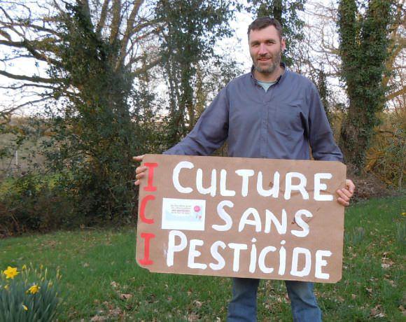 Nouveau bras de fer dans l'usage des pesticides