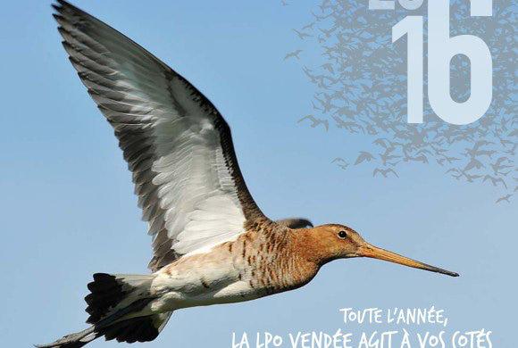 Le calendrier 2016 de la LPO Vendée