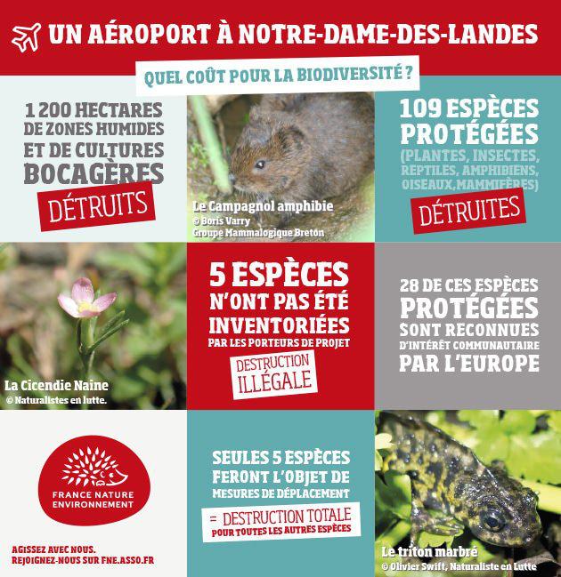 Un aéroport à Notre-Dame-des- Landes ... Quel coût pour la biodiversité ?
