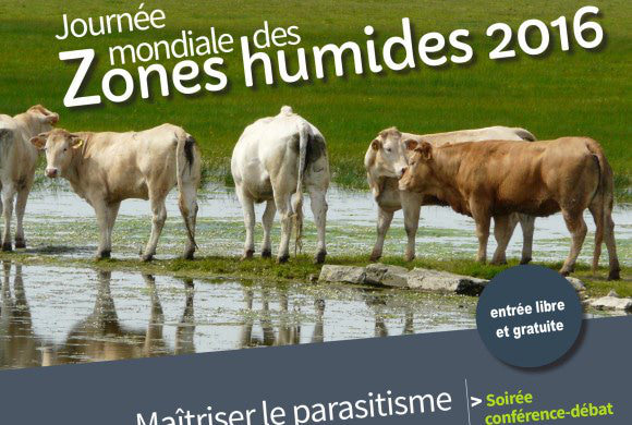 """Conférence """"Maîtriser le parasitisme des bovins au pâturage en respectant l'environnement"""""""