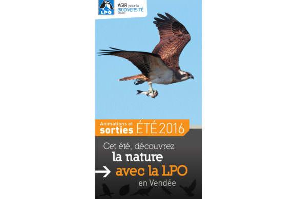 Guide des sorties estivales 2016 de la LPO 85
