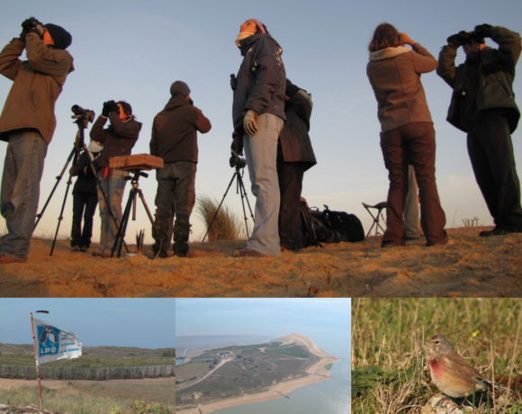 Dans – d'1 mois : Ouverture du camp de migration à la pointe de l'Aiguillon !