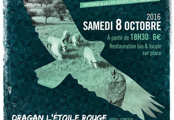 Noise for birds : le concert de la rentrée organisé par la LPO Vendée