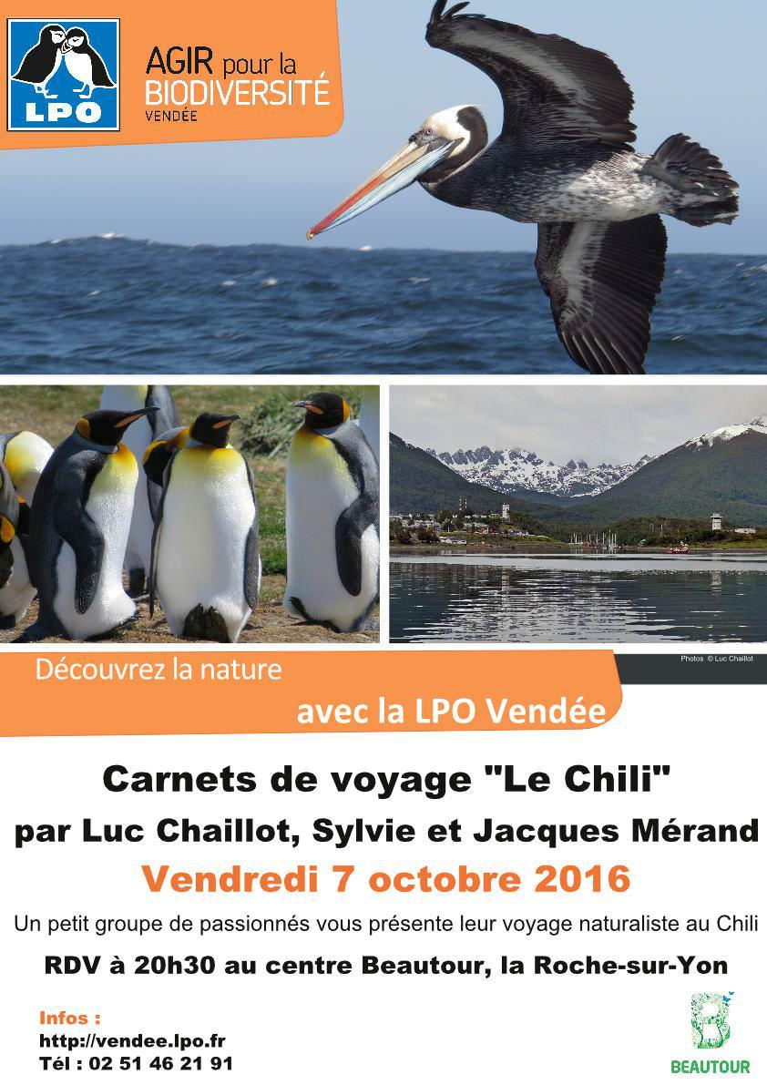 """Carnets de voyage """"Le Chili"""""""