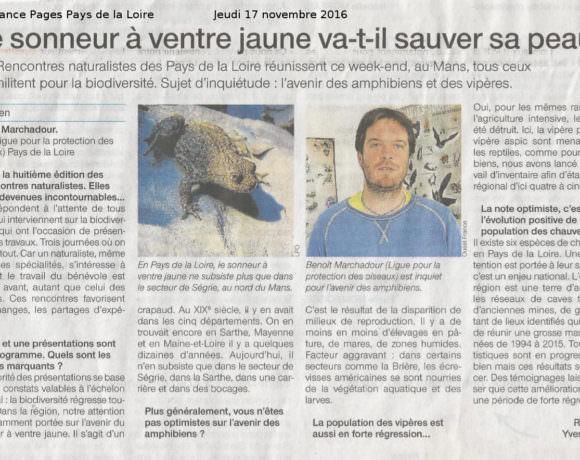 Rencontres Naturalistes des Pays de la Loire