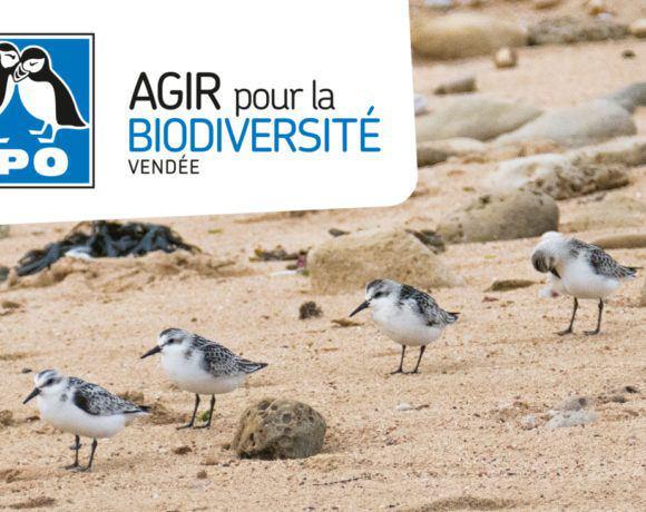 Film de présentation de la LPO Vendée