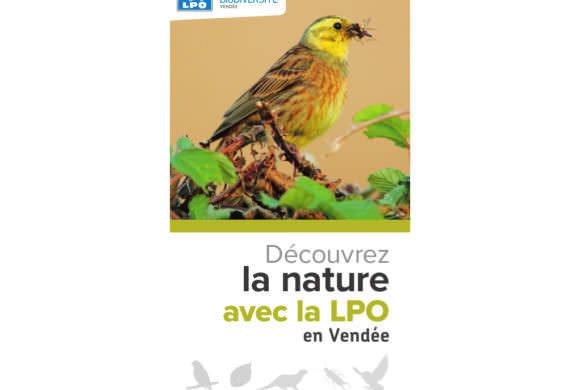 Guide des sorties 2017 de la LPO Vendée