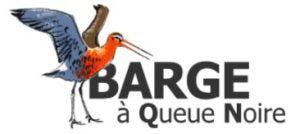 logo_site_web_BQN
