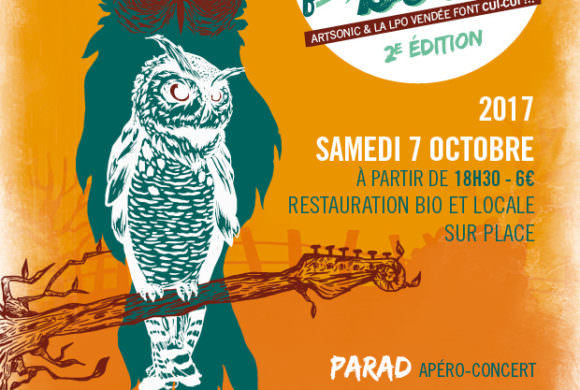 Noise for birds #2 : Pourquoi la LPO Vendée organise un concert ?