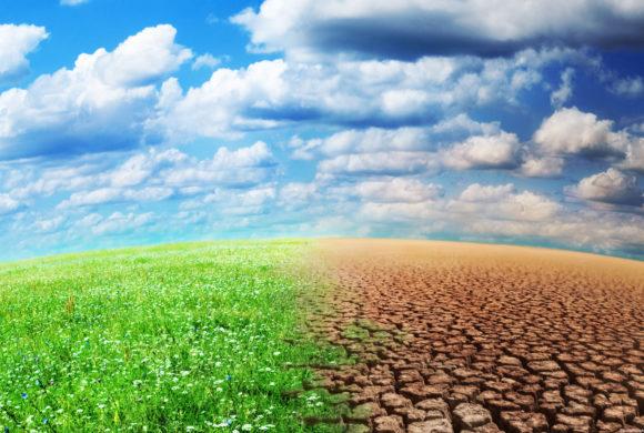 Changement climatique et mesures agro-environnementales