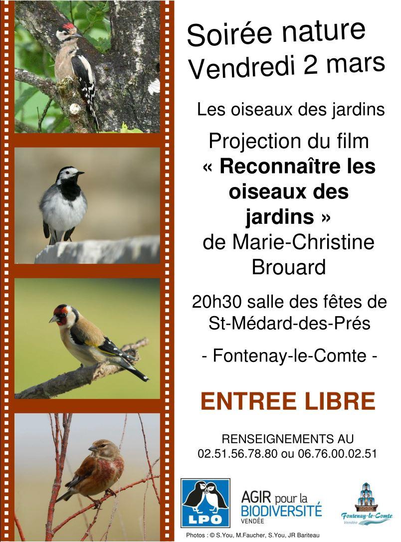 """Soirée nature """"Les oiseaux du jardin"""""""