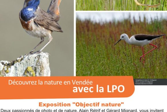 "Expo photos ""Objectif nature"""