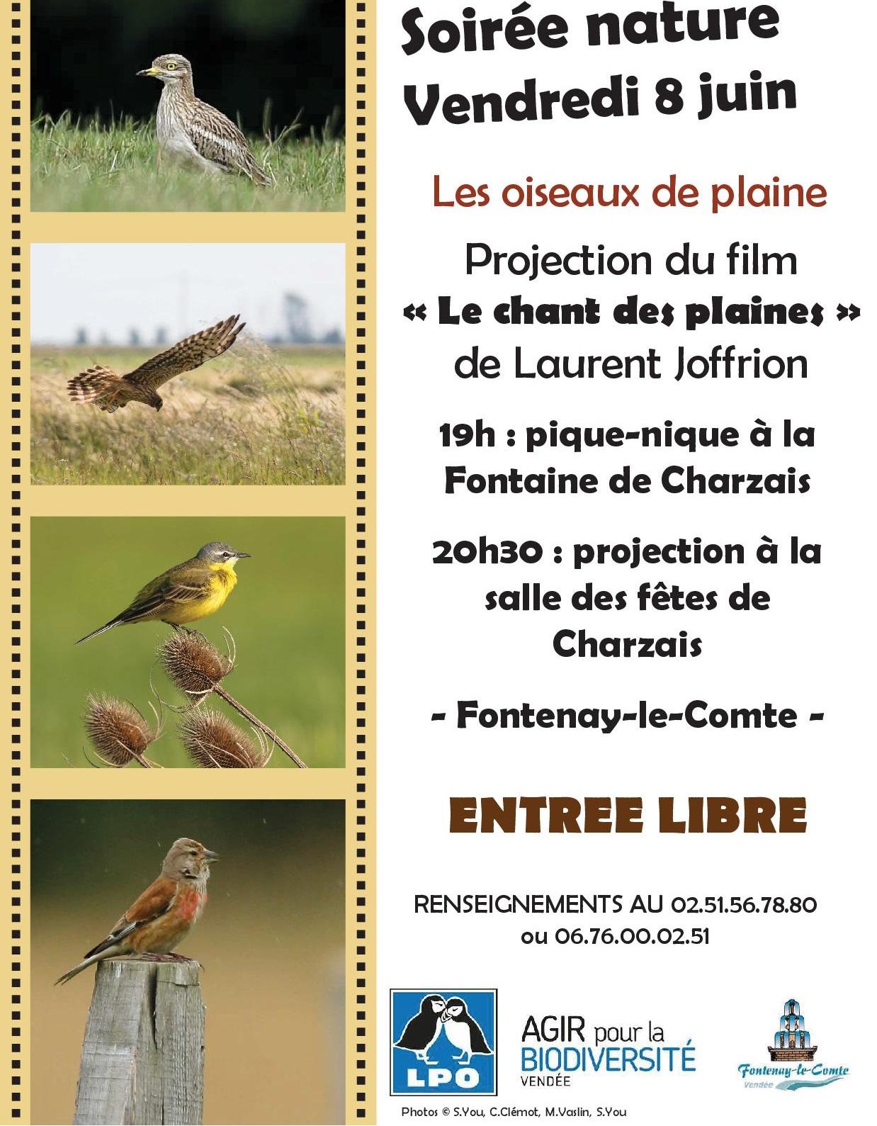 """Soirée nature """"Les oiseaux de plaine"""""""