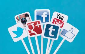 Sites web LPO en Vendée et réseaux sociaux