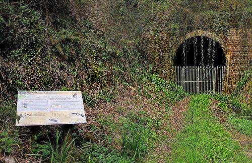 Natura 2000 Cavités à chiroptères du sud Vendée