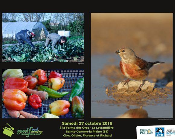 De la biodiversité au bien manger
