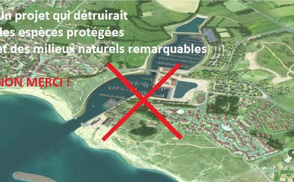 Port de Brétignolles : un projet d'un autre temps autorisé par le préfet