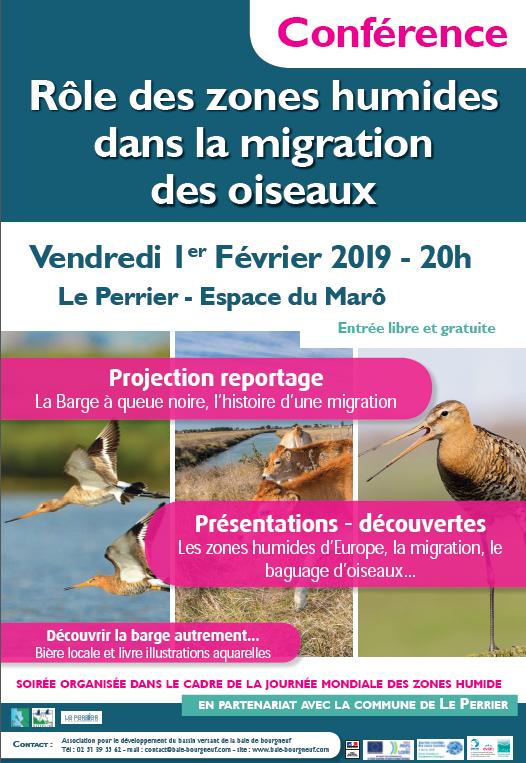 Rôle des zones humides dans la migration des oiseaux