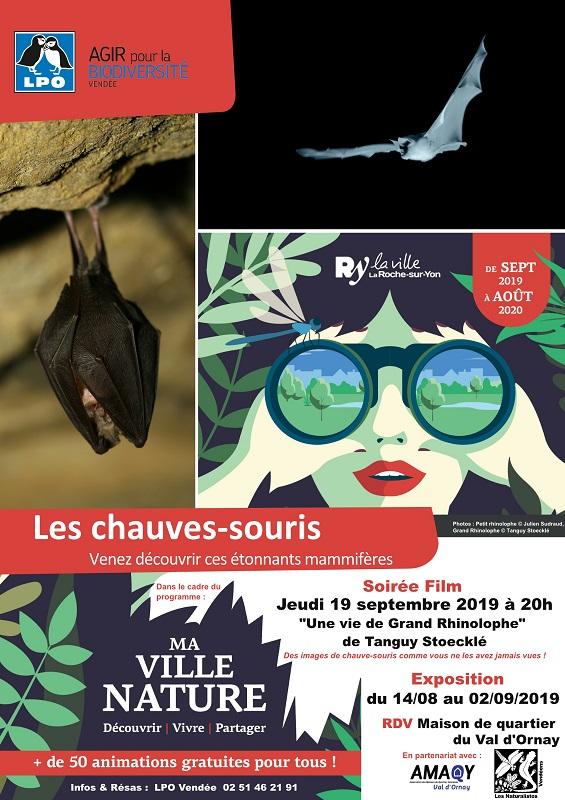 """Expo """"Les Chauves-souris"""""""