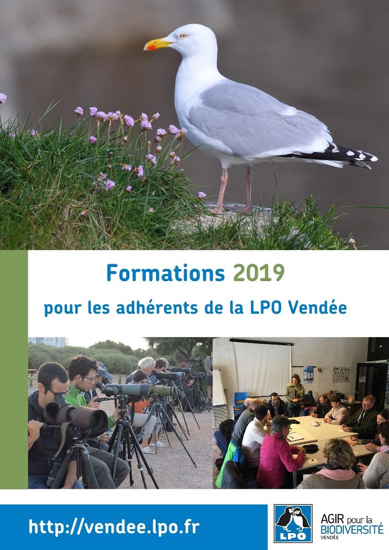 """Formation adhérents LPO """" Perfectionnement à la reconnaissance des Laridés"""""""