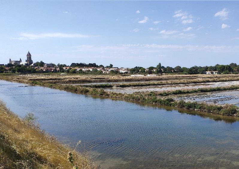 La réserve naturelle de Noirmoutier