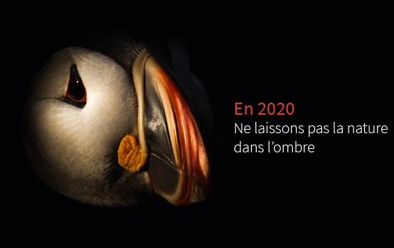 Une belle année 2020 !