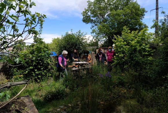 Centenaire des Refuges LPO : des jardins ouvrent leurs portes