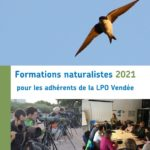 Formations LPO 2021