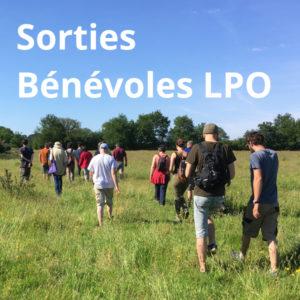 Sortie nature avec des bénévoles de la LPO Vendée