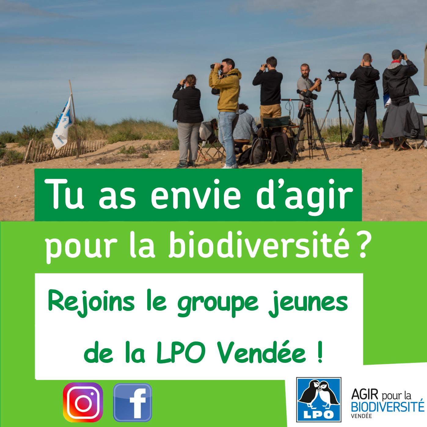 Soirée du groupe Jeunes de la LPO Vendée