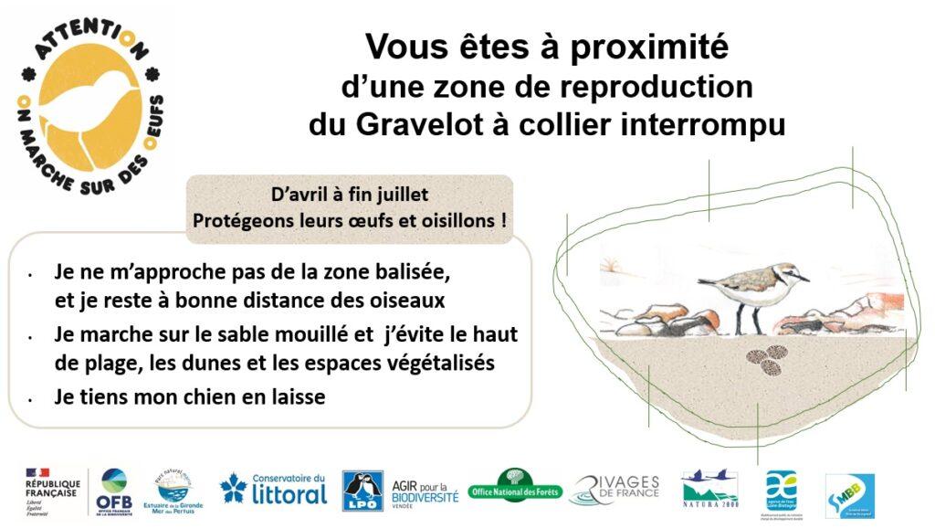 """Panneau de l'opération """"On marche sur des œufs"""" pour sensibiliser à la protection du gravelot à collier interrompu"""