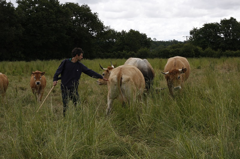 Sébastien Guilhemjouan - éleveur de vaches maraîchines et administrateur de la LPO Vendée - Photo © Alain Rétrif