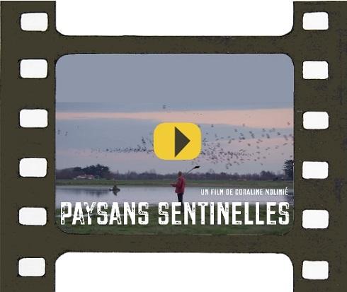 """Film documentaire """"Paysans sentinelles"""""""