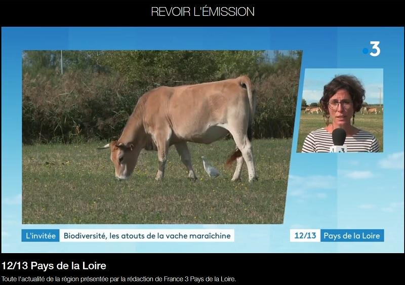 Micro-filière Biodiversités maraichines sur France 3 Pays de la Loire