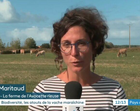 Micro-filière Biodiversités maraîchine : un reportage dans le 12/13 de France 3 Pays de la Loire